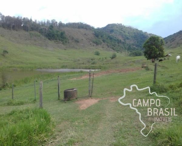 Fazenda de 98 alqueires no Sul de Minas! - Foto 10