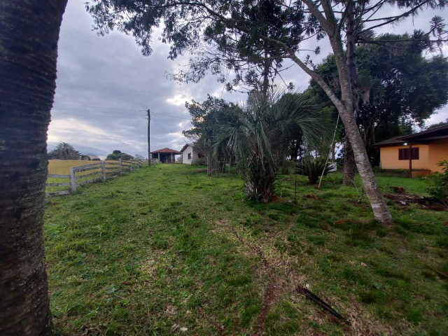 Sitio 8 hectares, 2 casas e pomar, ótimas pastagens, Velleda oferece - Foto 12