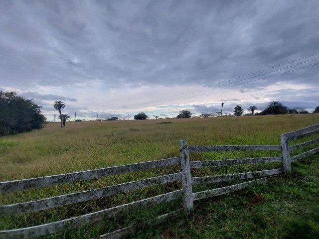 Sitio 8 hectares, 2 casas e pomar, ótimas pastagens, Velleda oferece - Foto 10