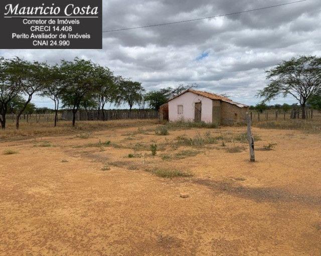 Fazenda à Venda em Campo Formoso - Bahia - Foto 9