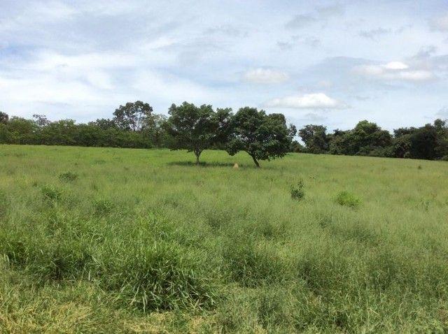 Pará De Minas - Fazenda - Santos Dumont - Foto 18