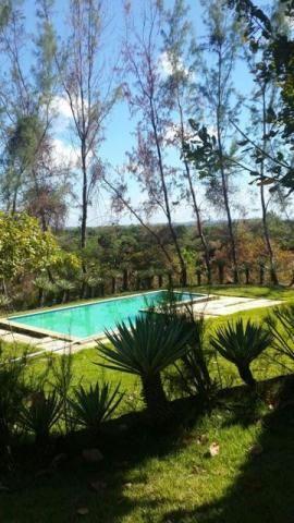 Sitio bem localizado na estrada de Jose de Freitas 14km da PRF 4 hectare