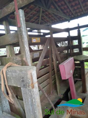 FAZENDA À VENDA ÓTIMA OPORTUNIDADE - Foto 7