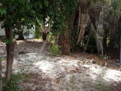 Terreno excelente no resort busca vida. camaçari, bahia. 740m² - Foto 7