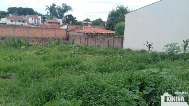 Terreno para alugar em Uvaranas, Ponta grossa cod:02950.6813 - Foto 3