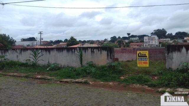 Terreno para alugar em Uvaranas, Ponta grossa cod:02950.6813 - Foto 2
