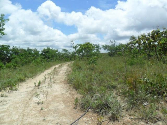 Chácara à venda com 3 dormitórios em Zona rural, Três marias cod:394 - Foto 16