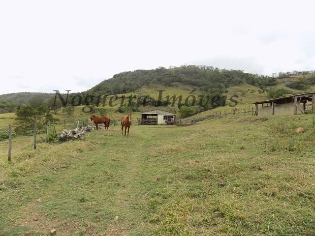 Fazenda de 65 alqueires na região (Nogueira Imóveis Rurais) - Foto 14