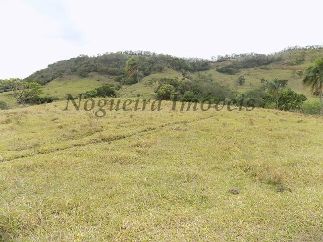 Fazenda de 65 alqueires na região (Nogueira Imóveis Rurais) - Foto 19