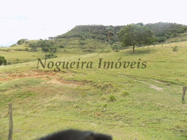 Fazenda de 65 alqueires na região (Nogueira Imóveis Rurais) - Foto 4