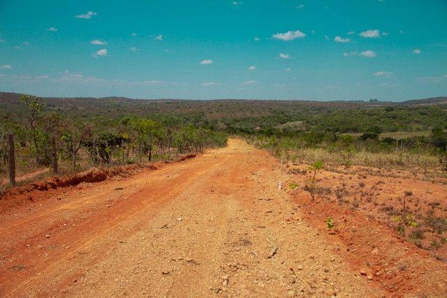 Fazendinha Portal dos Sertões (Codisburgo) - Foto 8