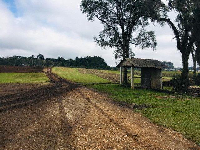 Área Rural em São José dos Pinhais - Foto 5