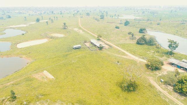 Fazenda próxima de Rio Branco - Acre