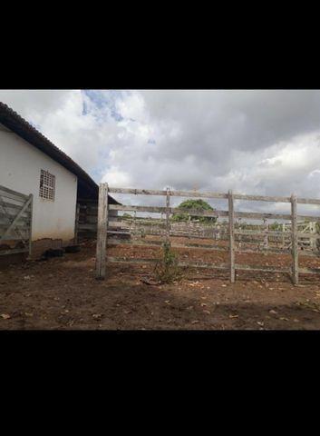Linda Fazenda com 45 hectares na região monte alegre - Foto 2