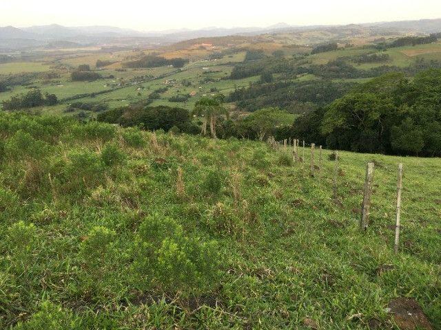 Sitio em Santo Antônio 8 Ha com Campo, Roça e Galpão. Linda Vista. Peça o Vídeo Aéreo - Foto 5
