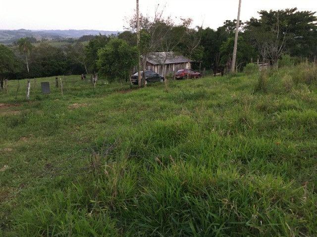 Sitio em Santo Antônio 8 Ha com Campo, Roça e Galpão. Linda Vista. Peça o Vídeo Aéreo - Foto 11