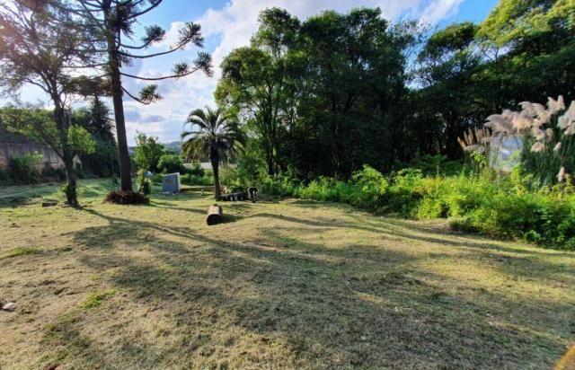 Chácara à venda, 1242 m² - Colônia Antônio Prado - Almirante Tamandaré - Foto 5