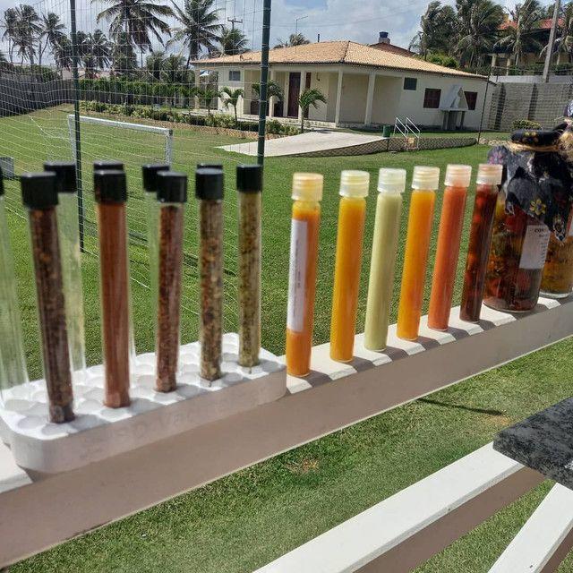 Pimentas em Molhos e Conservas  - Foto 2