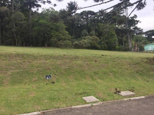 Terreno à venda, 720 m² por r$ 618.338,53 - centro - canela/rs - Foto 3
