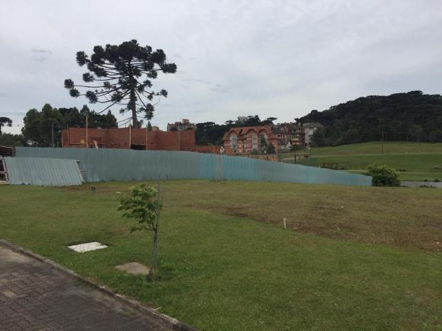 Terreno à venda, 939 m² por r$ 813.146,00 - centro - canela/rs - Foto 7