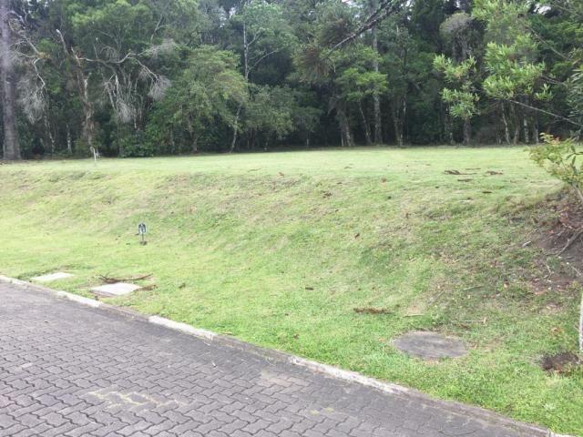 Terreno à venda, 720 m² por r$ 618.338,53 - centro - canela/rs - Foto 5