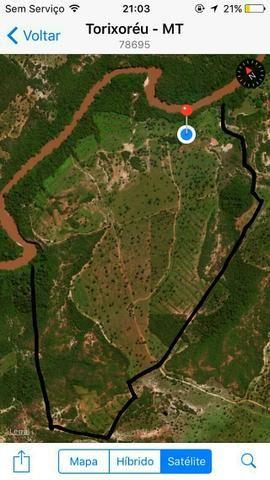 Fazenda 153 hectares