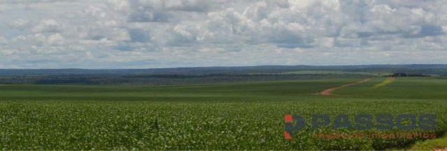 8067 | fazenda à venda em santa rita do trivelato , santa rita do trivelato - Foto 2