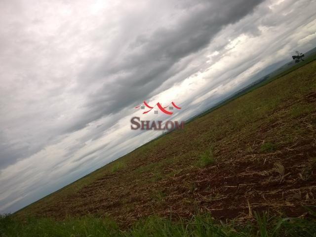 8051 | Sítio à venda em NÃO INFORMADO, ÂNGULO - Foto 3