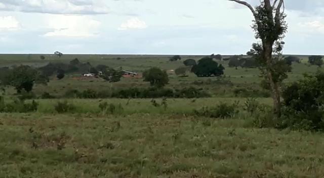 Fazenda de 853 hectares .400 hectares mecanizados . Colinas do Tocantins- TO - Foto 9
