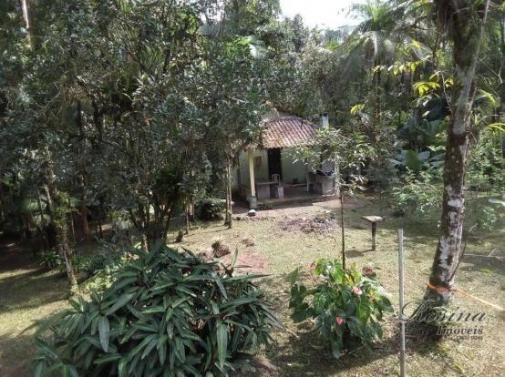 Chácara com 3 dormitórios à venda, 3100 m² por r$ 195.000,00 - porto de cima - morretes/pr - Foto 4