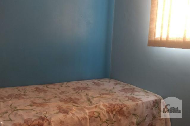 Apartamento à venda com 3 dormitórios em Salgado filho, Belo horizonte cod:241475 - Foto 5