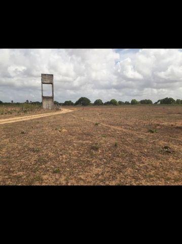 Linda Fazenda com 45 hectares na região monte alegre - Foto 7