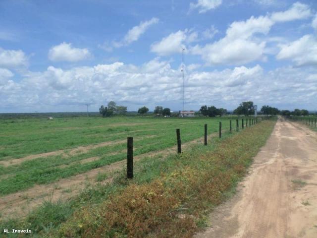 Fazenda para Venda em Gurupi, Área Rural de Gurupi, 3 dormitórios, 2 banheiros, 5 vagas - Foto 13