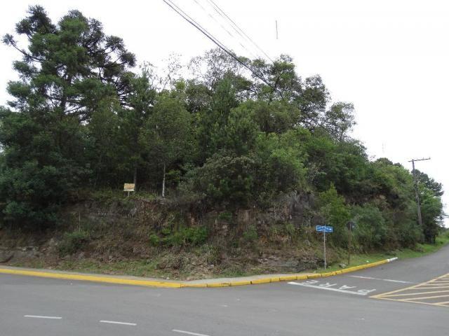 Terreno à venda, 2240 m² por R$ 6.500.000,00 - Centro - Gramado/RS