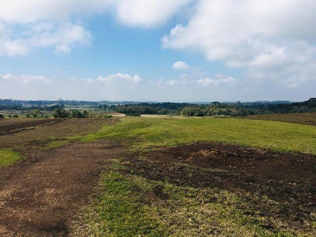 Área Rural em São José dos Pinhais - Foto 11