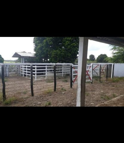 Linda Fazenda com 150 Hectares estruturada na Região de Macaiba