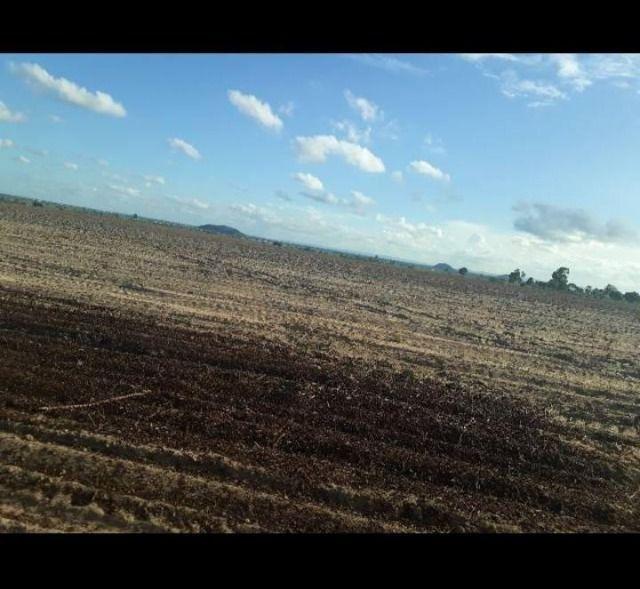 Otima Fazenda com 190 Hectares entre Lagoa de Pedras e Serrinha - Foto 7