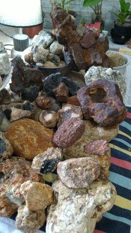 Pedras variadas para coleção  estudo ou decoração - Foto 4