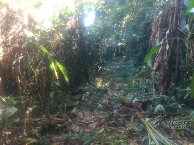 Terreno à venda, 20000 m² por R$ 88.000,00 - Capituva - Morretes/PR - Foto 4