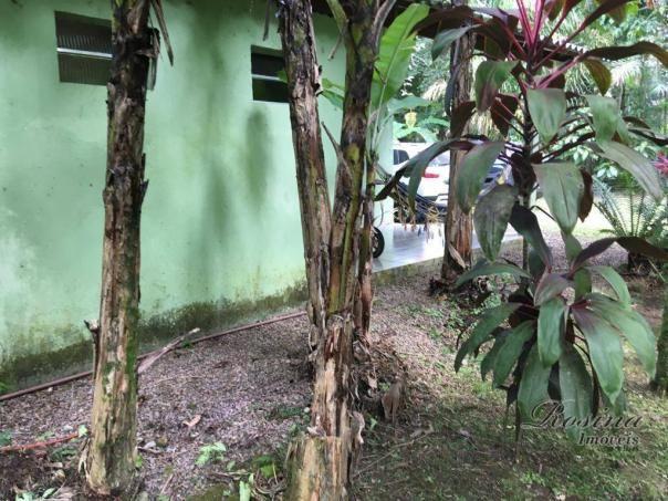 Chácara com 3 dormitórios à venda, 3100 m² por r$ 195.000,00 - porto de cima - morretes/pr - Foto 18