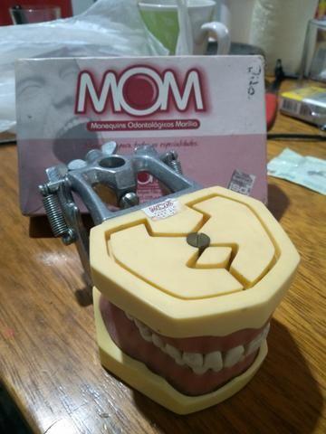 Manequim odontológico e instrumentais