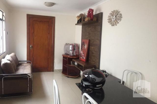 Casa à venda com 3 dormitórios em Carlos prates, Belo horizonte cod:241612 - Foto 15