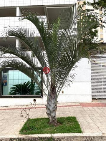 Apartamento 3 Quartos com Suíte e Varanda no Bairro Manacás - Foto 10