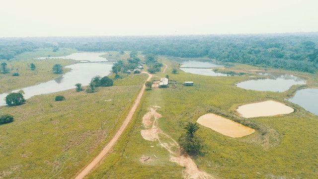 Fazenda próxima de Rio Branco - Acre - Foto 8