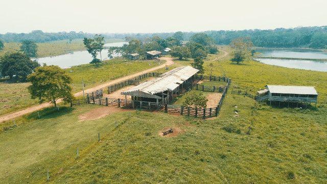 Fazenda próxima de Rio Branco - Acre - Foto 3