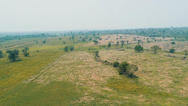 Fazenda próxima de Rio Branco - Acre - Foto 5
