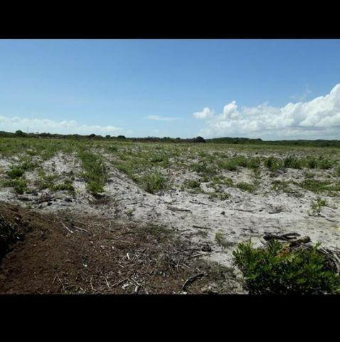 Linda Fazenda com 70 hectares na região de Ceará mirim com rio perene - Foto 4