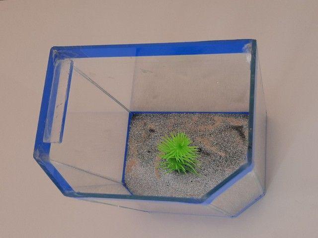 Aquário de vidro pequeno peixe A.L 13x11 cm - Foto 6