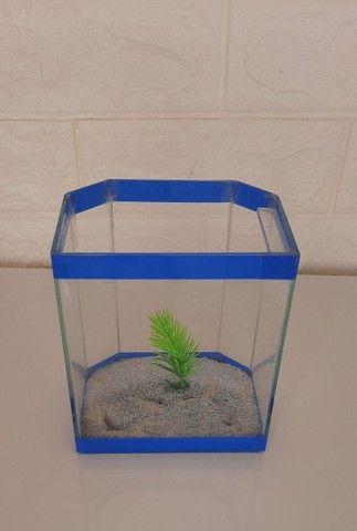 Aquário de vidro pequeno peixe A.L 13x11 cm - Foto 5