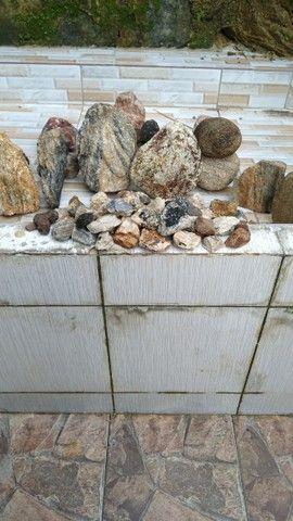 Pedras variadas para coleção  estudo ou decoração - Foto 5